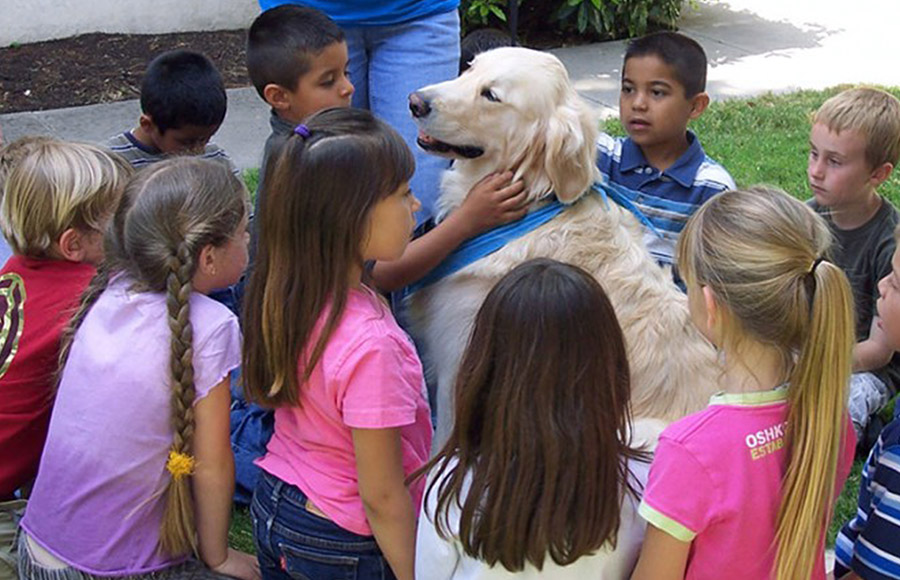 PAWS - Kindness Kids Program